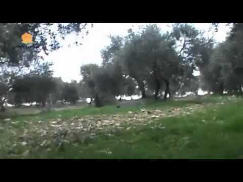 Syria Heavy fighting
