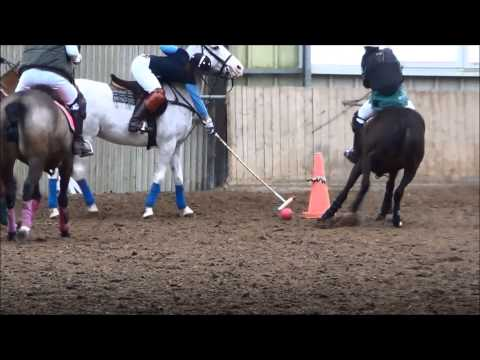 2014 03 Polo Training Indoor (Luxembourg)