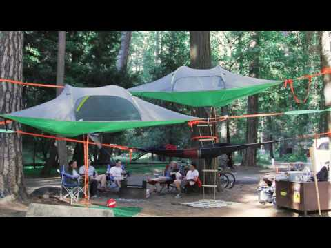 Family camping in Yosemite North Pines with Tentsile tree tents