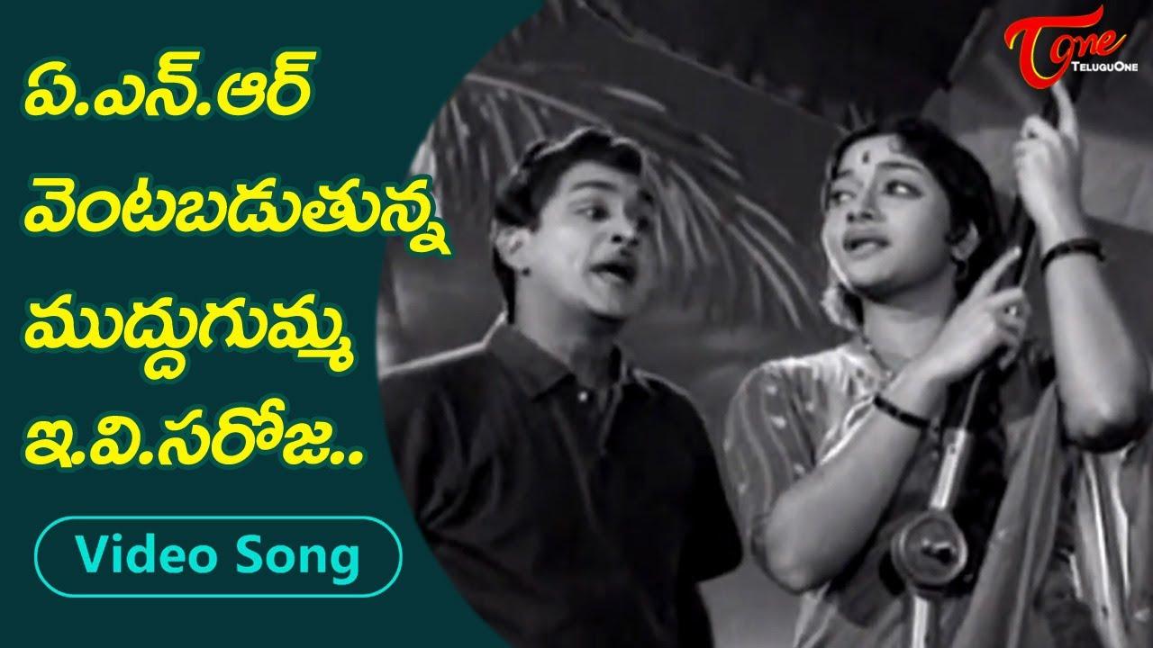 ఏ.ఎన్.ఆర్.వెంటబడుతున్న ముద్దుగుమ్మ..| E.V.Saroja Teasing ANR | Best love Song | Old Telugu Songs
