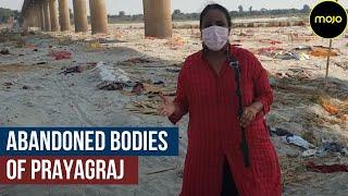 When the Dead Speak | Abandoned Bodies at Prayagraj Sangam | COVID | Barkha Dutt Ground Report Thumb