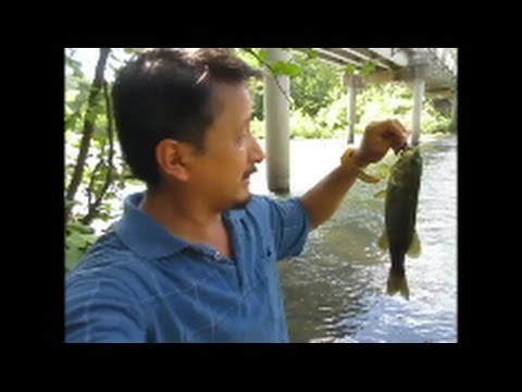Fishing Big Piney Creek On Fort Leonard Wood Missouri