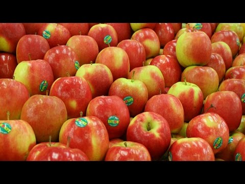 fruit apples tags labeling machine automatic customized labeller machinery food packaging industry
