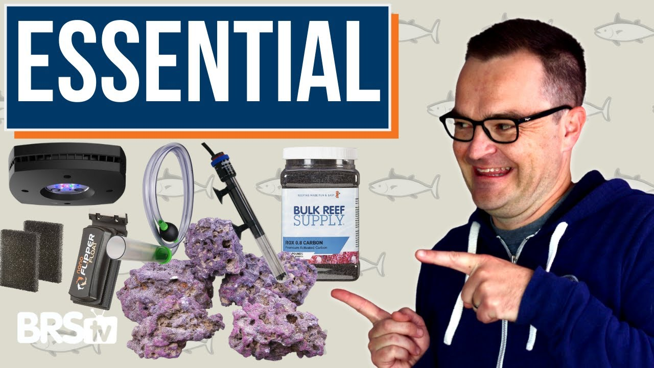 What Equipment Is Essential?: The Ultimate Beginner Guide Part 5 Thumbnail