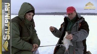 Ловля подлещика зимой на водохранилищах без течения Salapinru