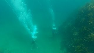 Sea Walker / シーウォーカー 海中散歩 トガイ浜 20120731 Goro@welsh Corgi