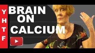 Your Brain On Calcium Oh No Stop Use Magnesium And Borin