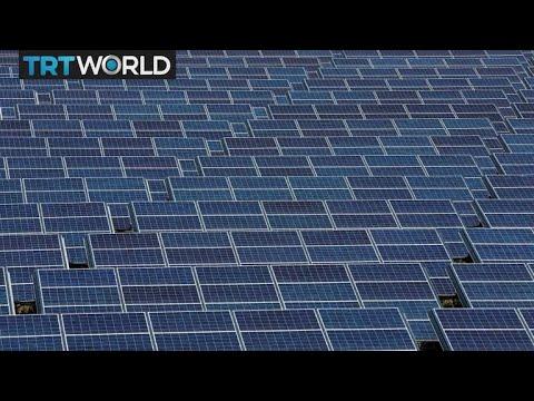 Trump's Solar Tariffs Threaten Thousands Of US Jobs   Money Talks