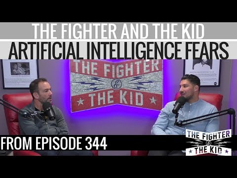 The Fighter and The Kid on Artificial Intelligence Fears