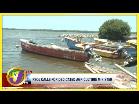 PSOJ Calls for Dedicated Agriculture Minister | TVJ Business Day - Sept 20 2021