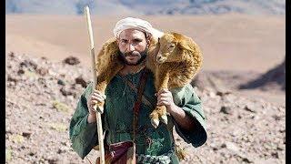 Hy Sinh Vì Đàn Chiên