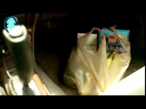 La gestación en la gata. de YouTube · Duración:  7 minutos 58 segundos