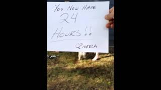 Neela doing the ALS Ice bucket challenge.