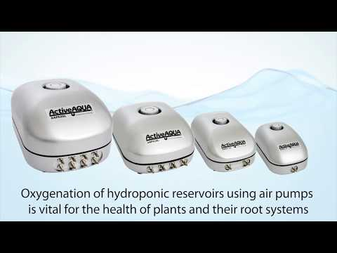 The Best Hydroponic Air Pumps Explained & Reviewed | Green