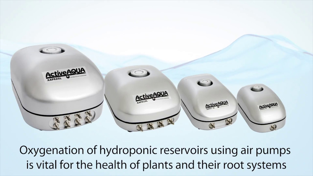 The Best Hydroponic Air Pumps Explained & Reviewed | Green and Vibrant