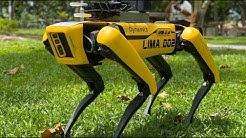 Hunde-Roboter in Singapur erinnert an Abstandsregeln