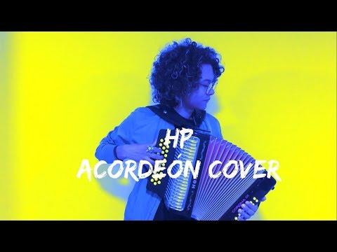 HP - Maluma Mulett Acordeón Cover