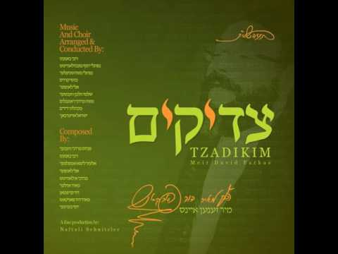 Tzadikim Preview - צדיקים - מאיר דוד פארקאש
