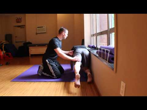 Transverse Abdominis and Gluteus Maximus Activation Progressions