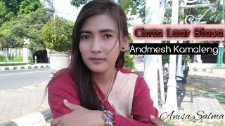 Download lagu Cinta Luar Biasa - Andmesh Kamaleng (Cover Anisa Salma) Skadruk MP3