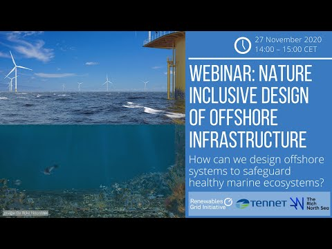 Webinar: Nature inclusive design of offshore infrastructure