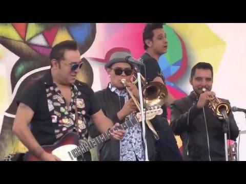 Amorcito - Los Gatos Rockabilly - Rockabily Neza Fest