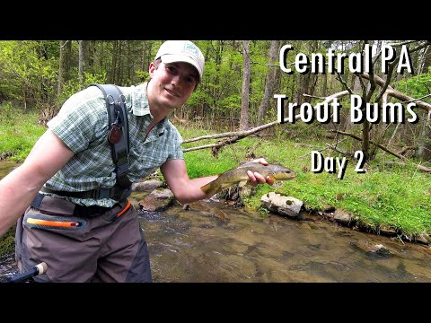 WBD---  Central PA  Spring Creek & More  Wild Browns  Trout Bums Day 2