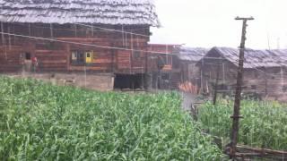 Rain In Sardari.mov