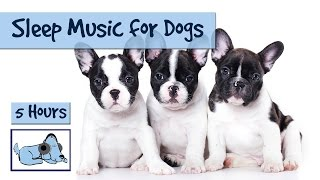 5 Hours of Relaxing Sleep Music for Your Dog!