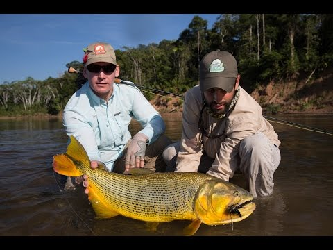 Monster Dorado, Catfish & Pacu In Bolivia-Tsimane