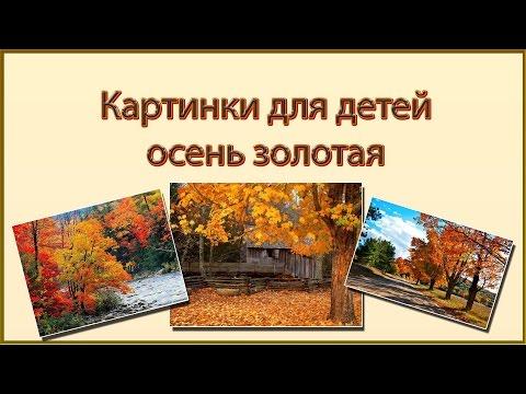 Cмотреть онлайн Картинки для детей золотая осень  Осень в картинках