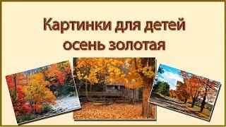 Картинки для детей золотая осень  Осень в картинках