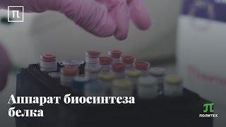 Аппарат биосинтеза белка – Андрей Коневега