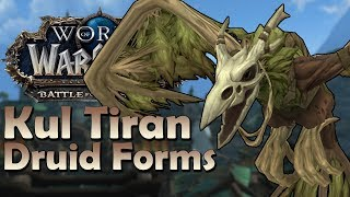 Kul Tiran Druid Forms - In Game Preview | Battle for Azeroth