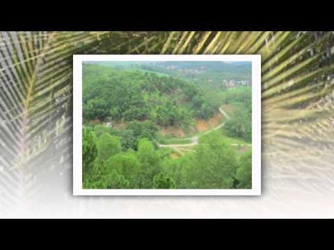Giới thiệu chùa Phật Tích - Bắc Ninh