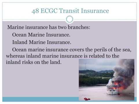48 ECGC Transit Insurance