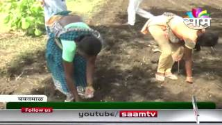 Ravi Bompilvar advises on Soyabean Cultivation