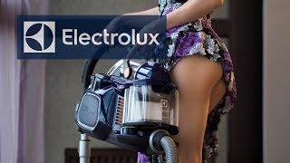 пылесос Electrolux Uforigindb обзор