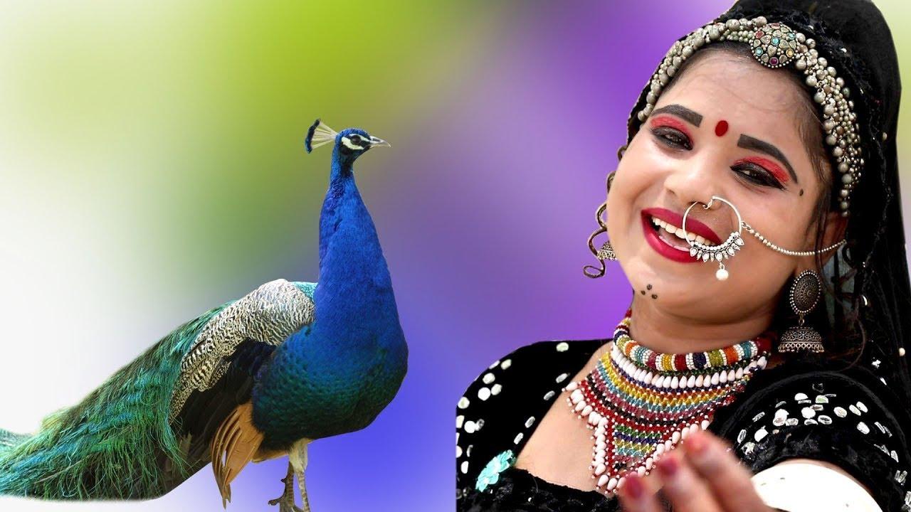 राजस्थानी DJ पर धूम मचा देने वाला सांग || मेरा यार दिलदार बड़ो सोनो #Latset_New_Rani_Rangili_Dj_Song