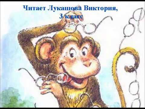Изображение предпросмотра прочтения – ВикторияЛукашова читает произведение «Мартышка и очки» И.А.Крылова