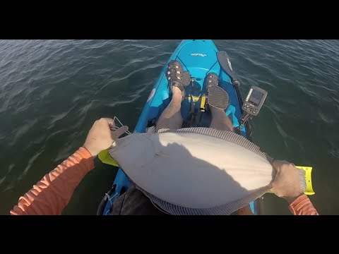 New Jersey 10 lb Fluke From A Kayak! Released!