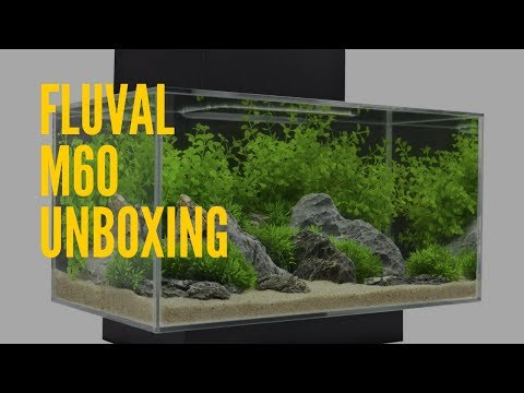 [Video One] New Tank: Fluval M60 Unboxing