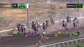 Vidéo de la course PMU PRIX WIMPALAI