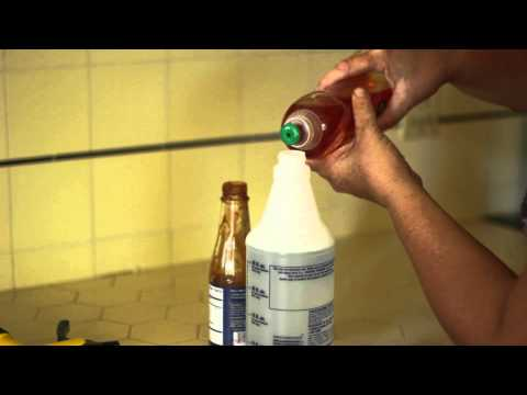 How to Make a Non-Toxic Insecticide for Plants : How to Grow & Maintain Garden Plants