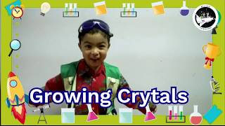Kids Science Experiment: Growing Crystals with Milton!!!