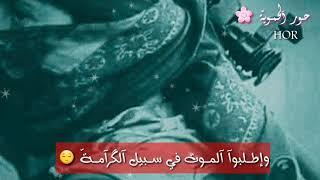 استميتوا هبوا الجحيم اضطراما / اناشيد جهادية حماسية / حالات جهادية / اناشيد اسلامية / حزينة / حماس /