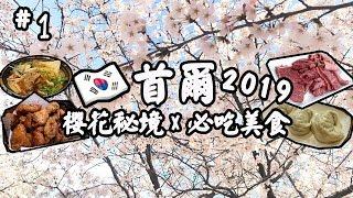 【韓國首爾🇰🇷2019】櫻花🌸美食😋馬場洞1++韓牛燒肉、神仙雪濃湯、橋村炸雞 | 自由行旅遊攻略