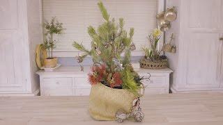 How to make a New Zealand Kiwiana Christmas Tree