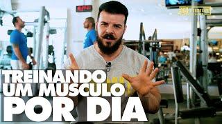 Gambar cover Dicas do Laercio: aprenda a treinar um grupo muscular por semana e ter resultados