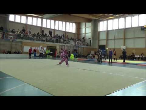 3rd Wushu Swiss Open - Traditional Taolu Part 3